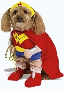Wonder Puppy